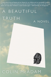 A BEAUTIFUL TRUTH by Colin McAdam