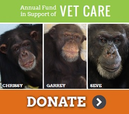 Annual Fund Vet Care callout 2016_2