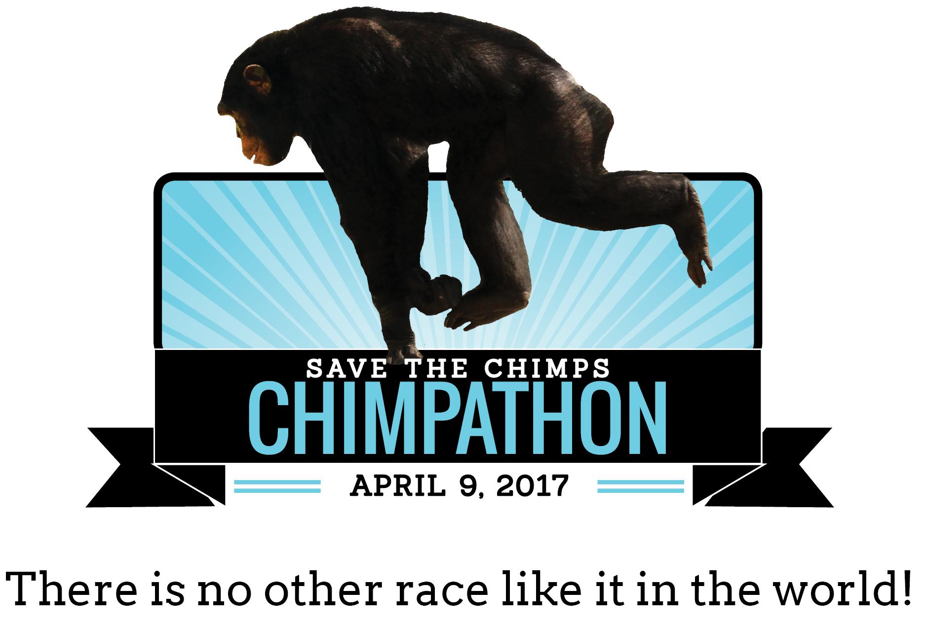 chimpathon-datetagtransp