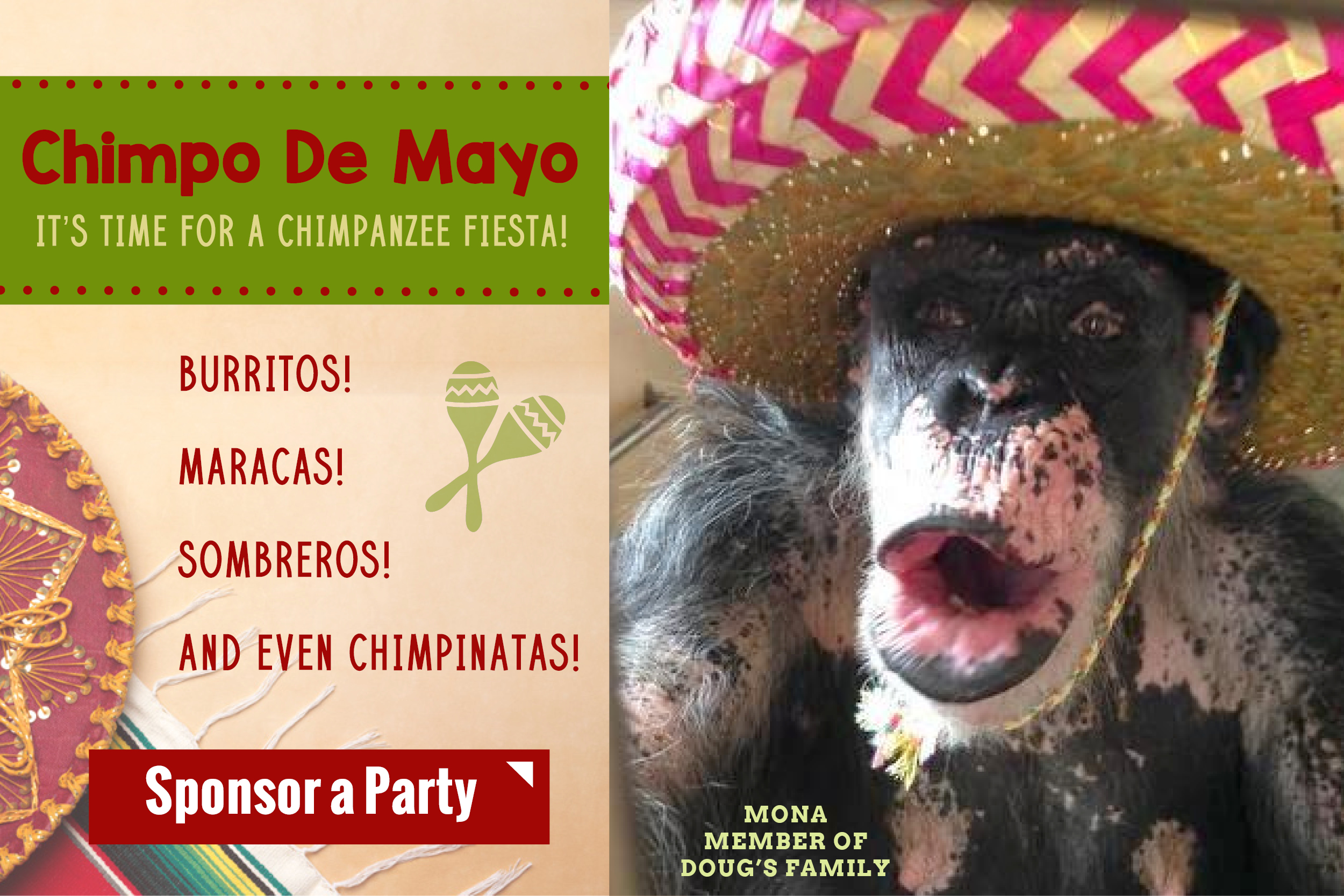 Chimpo de mayo email graphic