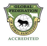 Logo_-_Acrredited_hires_cmyk-01[2]