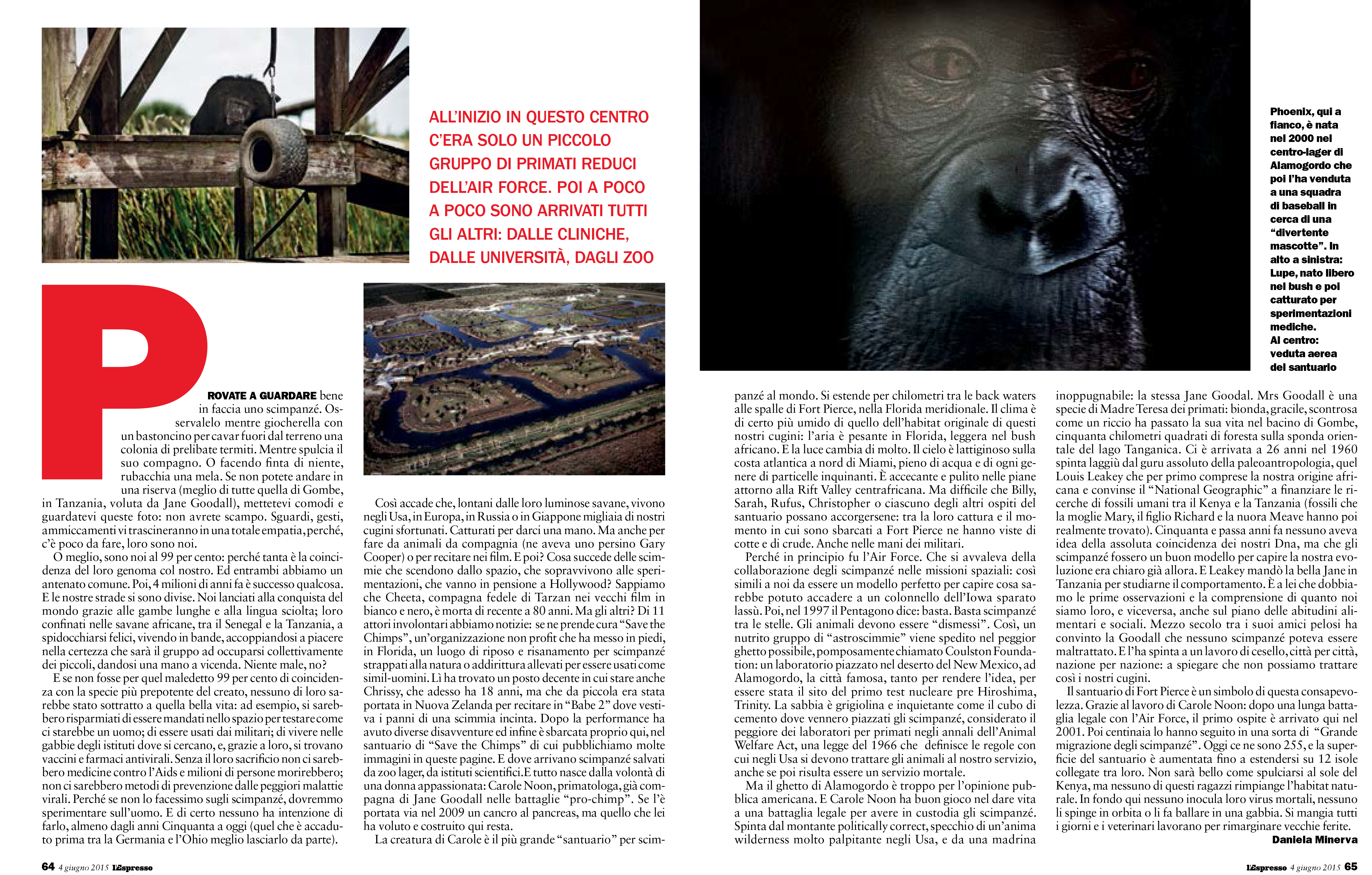 SAVE THE CHIMPS featured in L'ESPRESSO MAGAZINE-3
