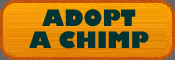 adopt-a-chimp