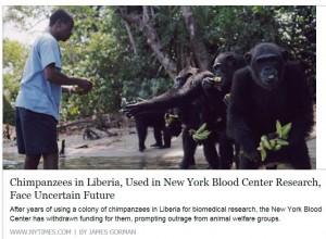 news-Liberia